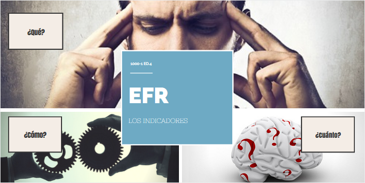Indicadores EFR | Erre Ese