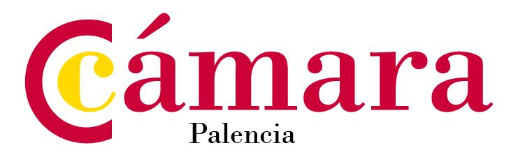 Cámara Palencia | Erre Ese