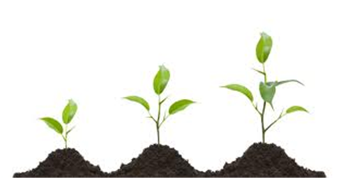 https://erreese.com/wp-content/uploads/2012/10/smart_profit_growth.png