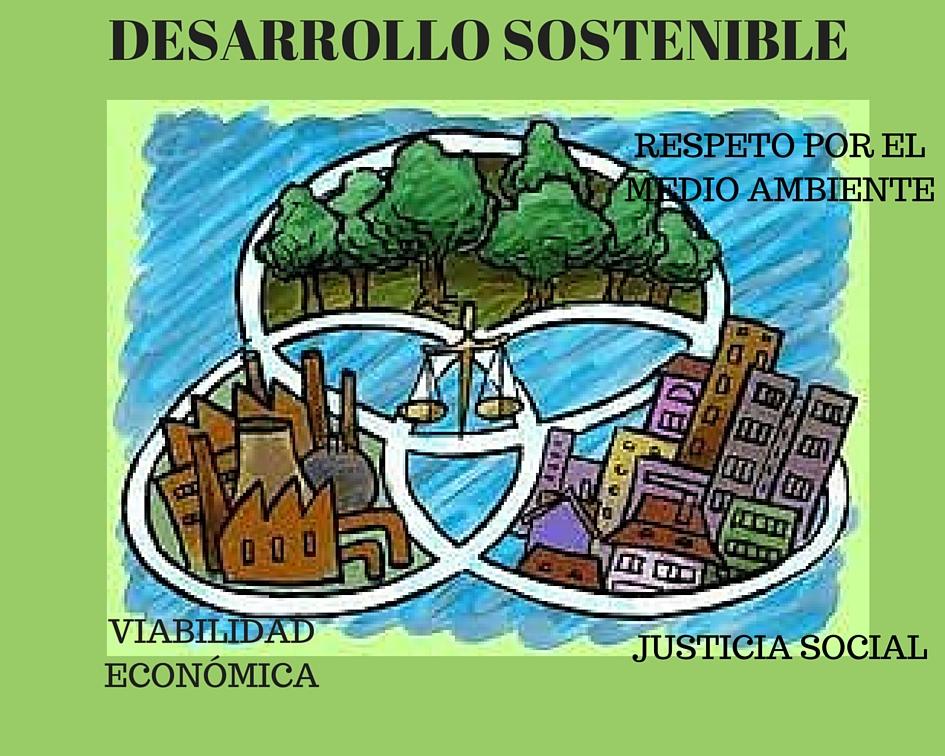 Dimensión Ambiental De La Rsc