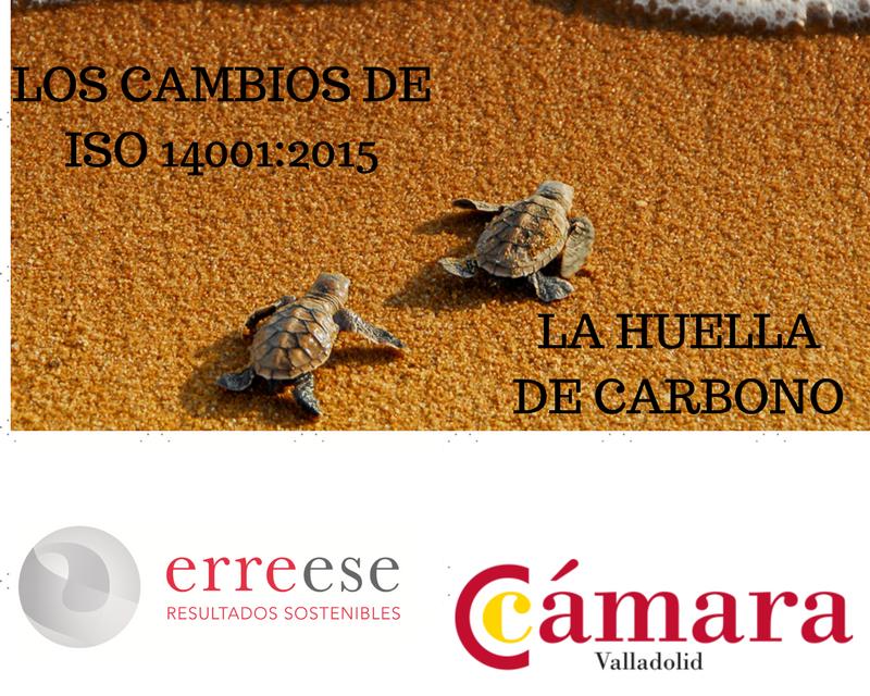https://erreese.com/wp-content/uploads/2017/04/Talleres-MA-Cámara-Va-800x640.png