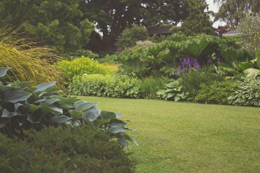https://erreese.com/wp-content/uploads/2018/08/garden.jpg